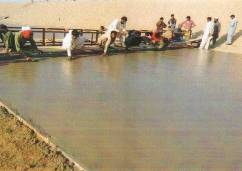 muzaffargarh and tp link canal
